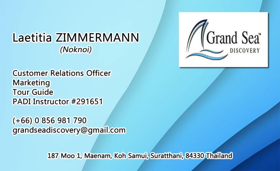Business card – Grand Sea