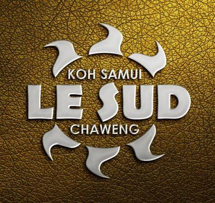 Logo - Le Sud