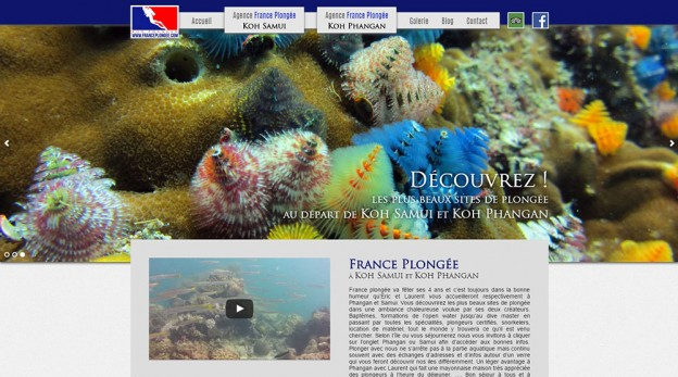 Website - France Plongée