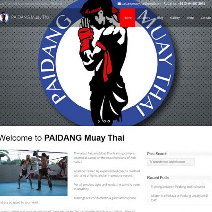 Website - Paidang Muay Thai