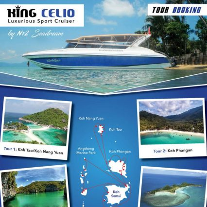 Brochure - King Celio