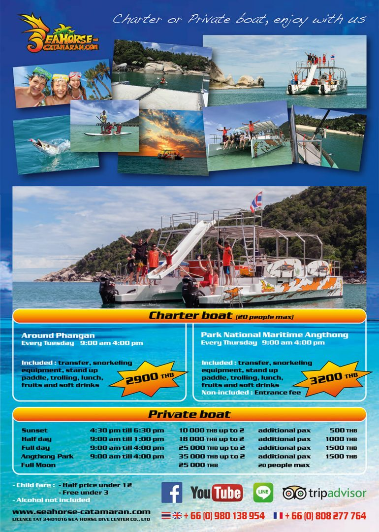 Brochure – Seahorse Catamaran