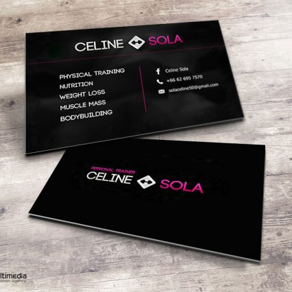 Printing business card portfolio at koh samui samui multimedia business card celine sola colourmoves