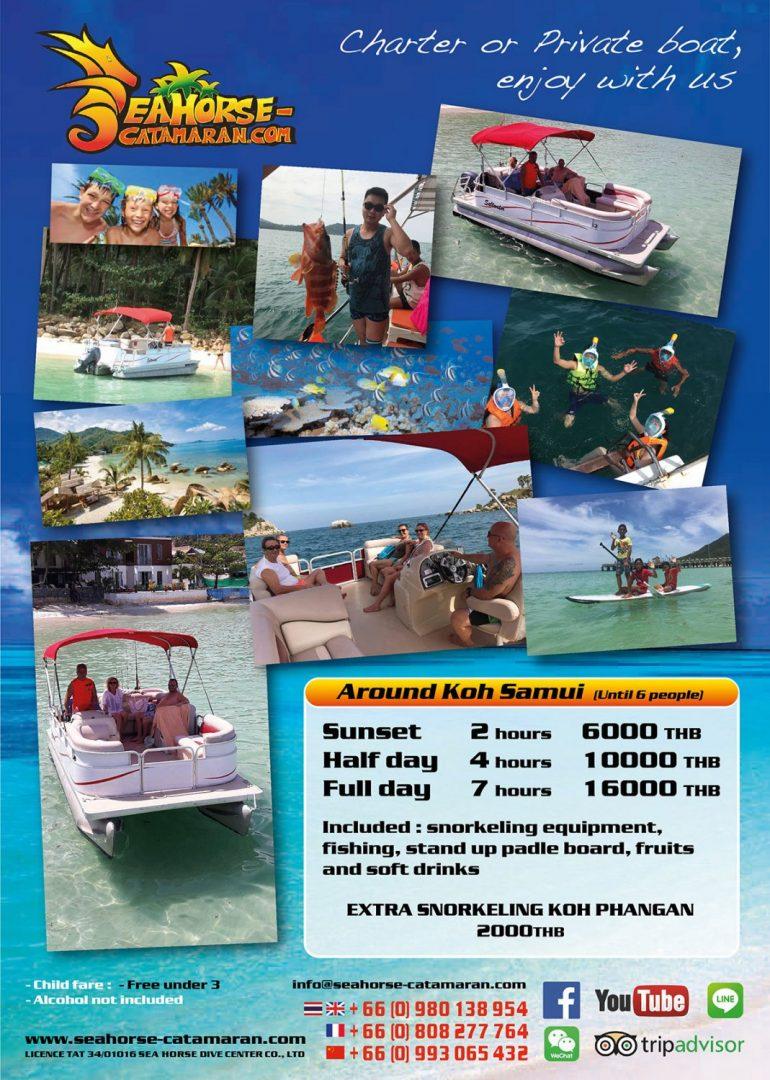 Kiff flyer - Seahorse Catamaran