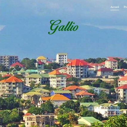 Website - Gallio